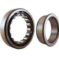 NJ2209EM Cylindrical Roller Bearing Fix Outer Flanged Loose Inner (45x85x23)