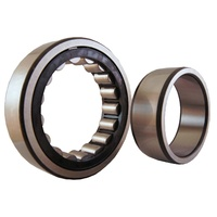 NU203EM Cylindrical Roller Bearing Fixed Outer Loose Inner (17x40x12)