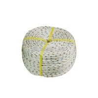208005 Silver Rope 6mmx125m